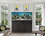 SCA 150 Gallon Aquarium Plug N Play System with Maple Wood Cabinet (Weathered Slate)