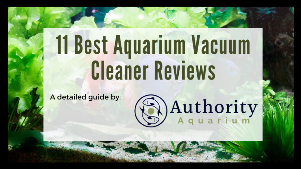 11 Best Aquarium Vacuum Cleaner Reviews
