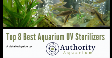 Top 8 Best Aquarium UV Sterilizers