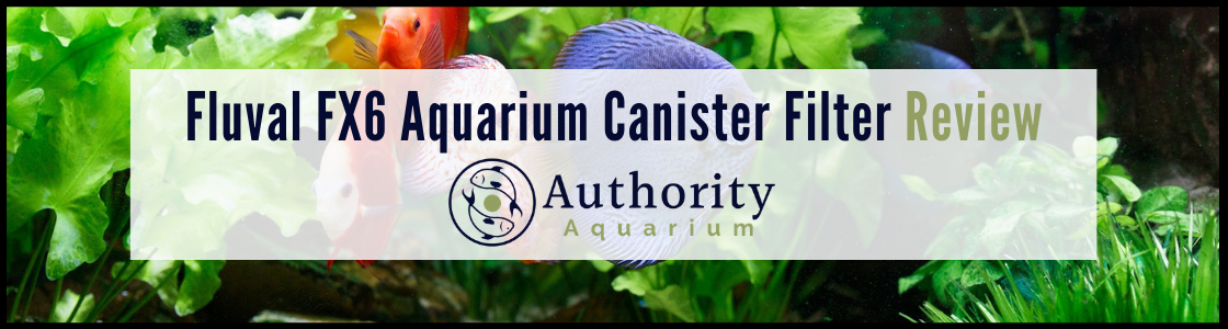 Fluval FX6 Aquarium Canister Filter Review