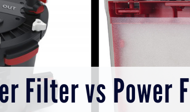Canister Filter vs Power Filter